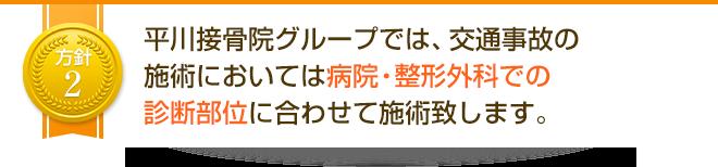 平川接骨院グループでは、交通事故の施術においては病院・整形外科での診断部位に合わせて施術致します。